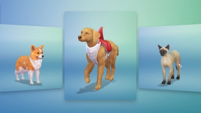 De Sims 4 - Honden en Katten: Creëer-een-huisdier Trailer